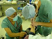 橈骨動脈カニュレーション